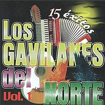 15 Exitos de los Gavilanes del Norte
