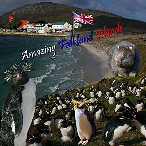 Amazing Falkland Islands [Lingua Inglese]