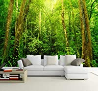 Wkxzz 壁の背景装飾画 自然風景3D Hd大壁画森の写真の壁紙リビングルームの風景ホームセンターカスタム壁紙壁画-350X250Cm