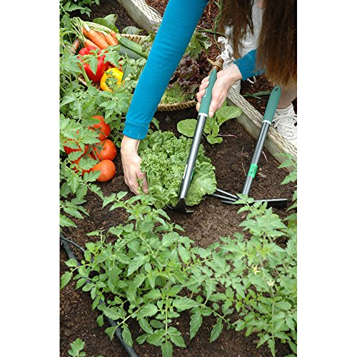 """Yard Butler Terra Planter All Steel 15"""" Planting Trenching Digging Garden Hand Tool Dual Action Mini Spade And Pick – TT-2P"""