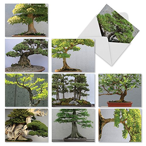 10 Assorted 'Tiny Trees' Thank You Cards with Envelopes 4 x 5.12 inch, Appreciation Greeting Cards with Close Up Photos of Bonsai Trees, Stationery for Weddings, Baby Showers, Holidays M2307