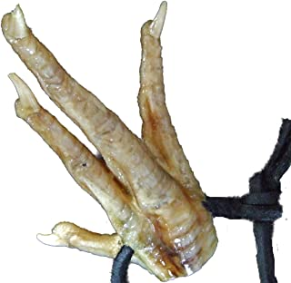 Alligator King Chicken Foot Necklace New Orleans Louisianna Cajun Voodoo Magic Amulet Potion