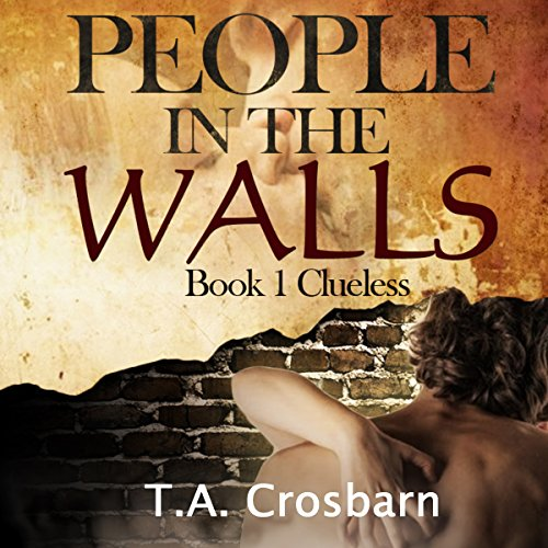 People in the Walls audiobook cover art