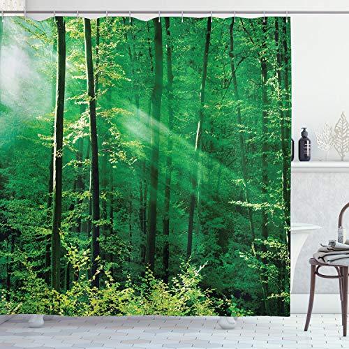 ABAKUHAUS Wald Duschvorhang, Wald Bäume Morgen, Seife Bakterie Schimmel & Wasser Resistent inkl. 12 Haken & Farbfest, 175 x 200 cm, Grün-weiß