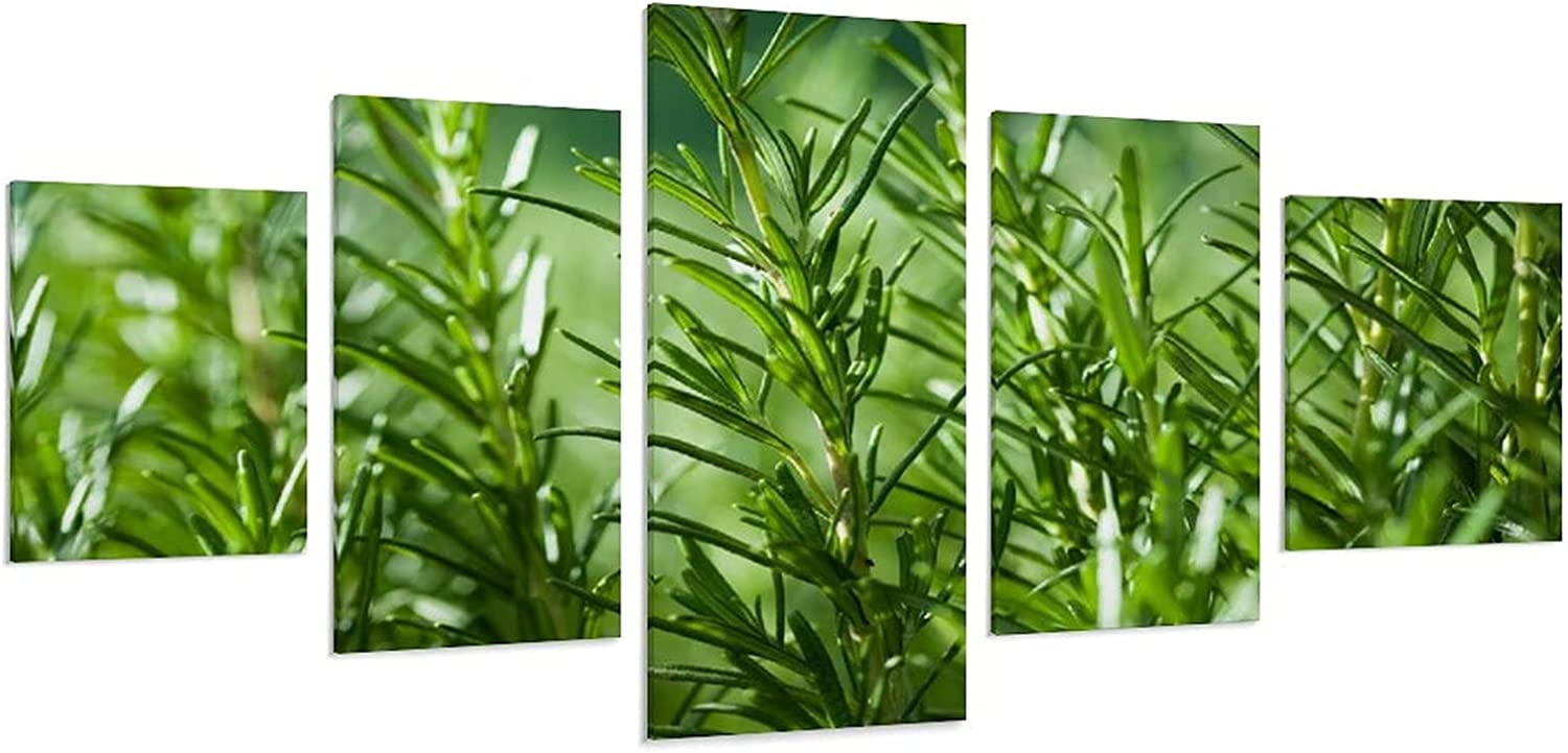 Plant Super sale Flowers Posters Decoration Poster Room Popular brand Wa