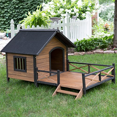 Large Dog House Lodge with Deck