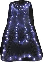 Wuchial Led Fan Veils Belly Dancer Dancing Silk Fan Veil Praise Glow LED Light Up Show