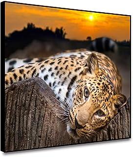 Amazon Com Cheetah Bedroom Decor