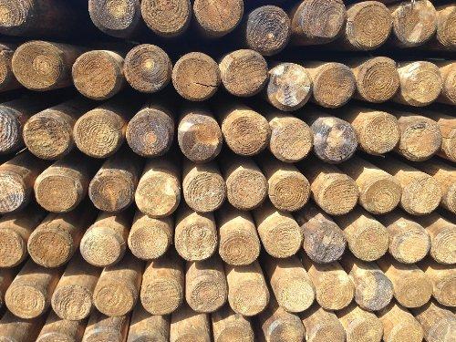 Pfähle Pfahl Baumpfähle, Runde Holzpfosten, Palisaden, Befestigungspfähle (Ø5 cm x 150cm) - 5