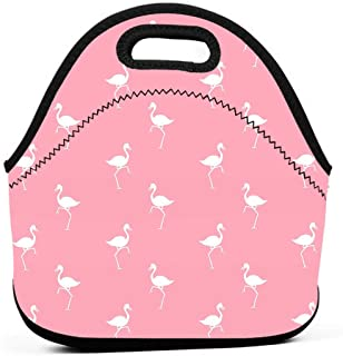 82da627f2e7d Amazon.com: flamingo dental: Toys & Games