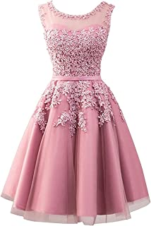 Tulle Short Homecoming Dresses Junior Prom Party Dress Evening Formal Gowns Lace Appliques