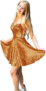 Jonlyc Shiny Sequined Short Homecoming Dresses A Line Prom Party Gowns