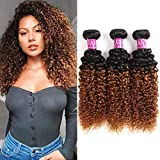 Alisfeel Ombre Curly Bundles Brazilian Curly Hair Wet and Wavy Human Hair Weave 3bundles Kinky Curly 1b/30 Black to Brown (14'16'18')
