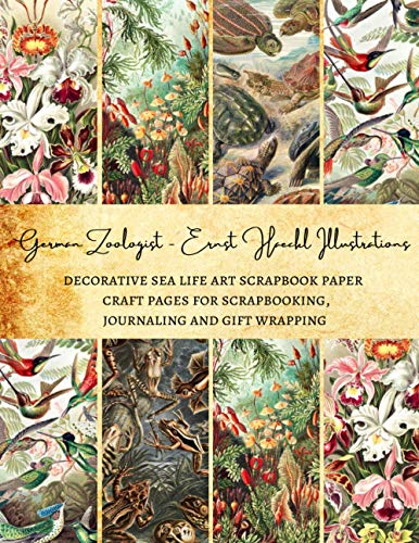 German Zoologist Ernst Haeckl Illustrations | Decorative Sea life Art Scrapbook Paper | Craft Pages for Scrapbooking, Journaling and Gift Wrapping: Premium Sheets for Card Making