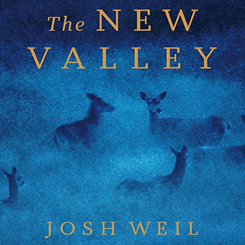 The New Valley audiobook cover art