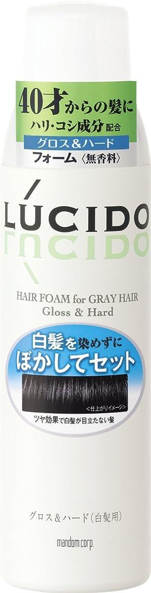 みがきます服を片付けるキネマティクスLUCIDO (ルシード) 白髪用整髪フォーム グロス&ハード 185g