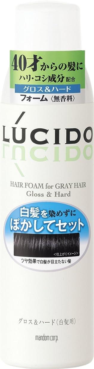 バンエアコン寝室LUCIDO (ルシード) 白髪用整髪フォーム グロス&ハード 185g