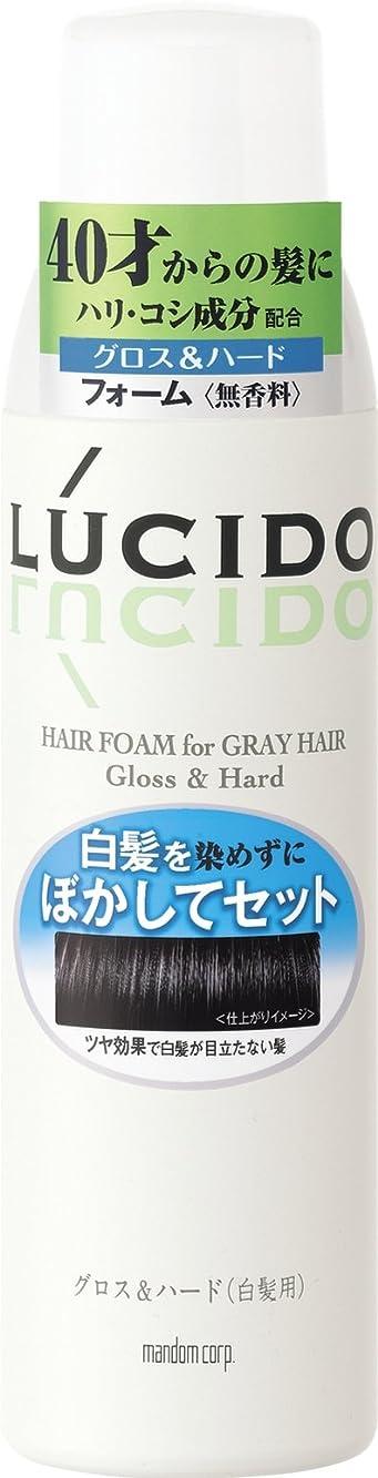 販売員木曜日腹LUCIDO (ルシード) 白髪用整髪フォーム グロス&ハード 185g
