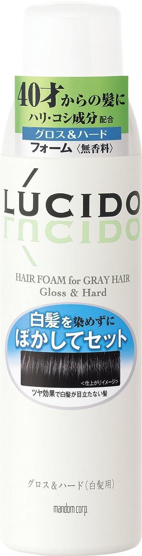 家庭役職塩辛いLUCIDO (ルシード) 白髪用整髪フォーム グロス&ハード 185g