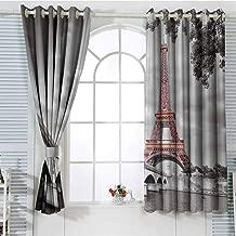 Jinguizi Grommet Window Curtain Boys Room Decor Paris City Decor,Eiffel Tower Bridge Capital City Cloudscape Monochrome Selective Colorization Picture Print Window 55 x 40 inch