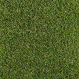 247Floors Outdoor Plants