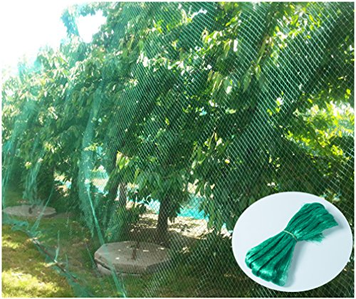 CandyHome 13Ft x 33Ft Anti Bird Protection Mesh Garden Netting Seedlings Plants Flowers Fruit Trees Vegetables from Rodents Deer Reusable Fencing, Green