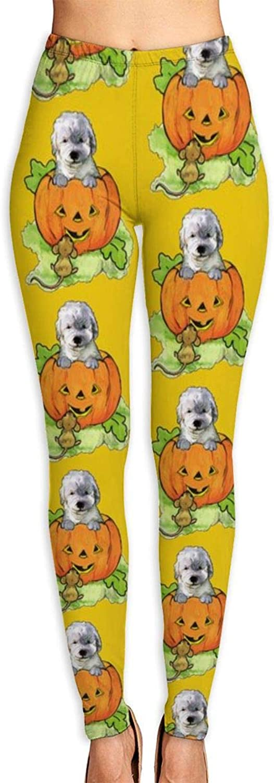 Halloween Labradoodle Puppy High Waist Yoga Pants Tummy Control Workout Pants for Women Stretch Yoga LeggingsMedium
