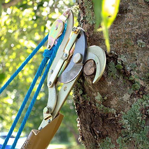 Jameson JA-34DP-PKG Big Mouth Side Cut Double Pulley Tree Pruner Kit