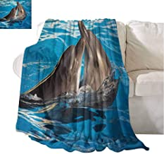 Fleece Throw Blanket Aqua Show Pair of Dolphins Dancing in The Pool Animal Family Tenderness Love Blue Dark Taupe Sofa Chair 84x70 Inch
