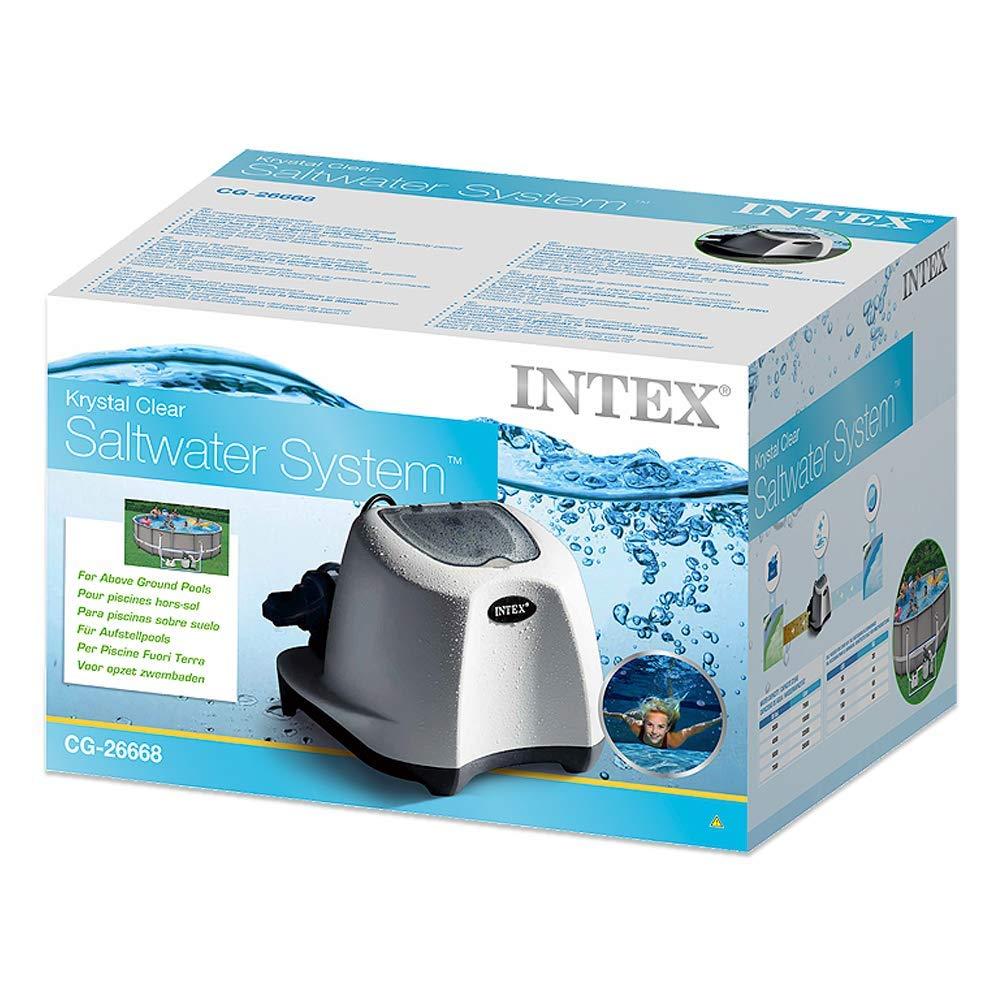 Intex 26668 Sistema cloración salina ECO 5 gramos/hora: Amazon.es ...
