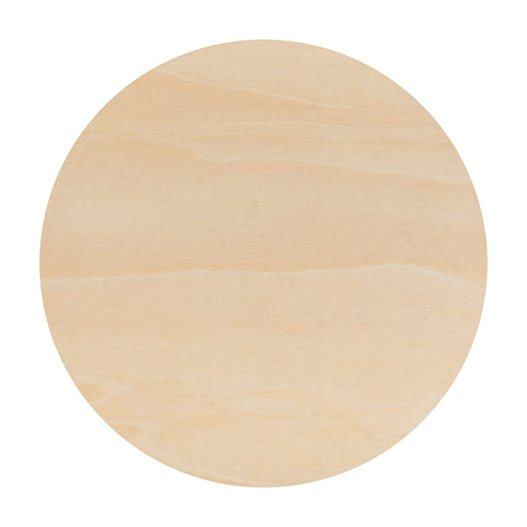 Unfinished Round Wood Circle Cutout 14 Inch - Bag of 5 - by Woodpeckers