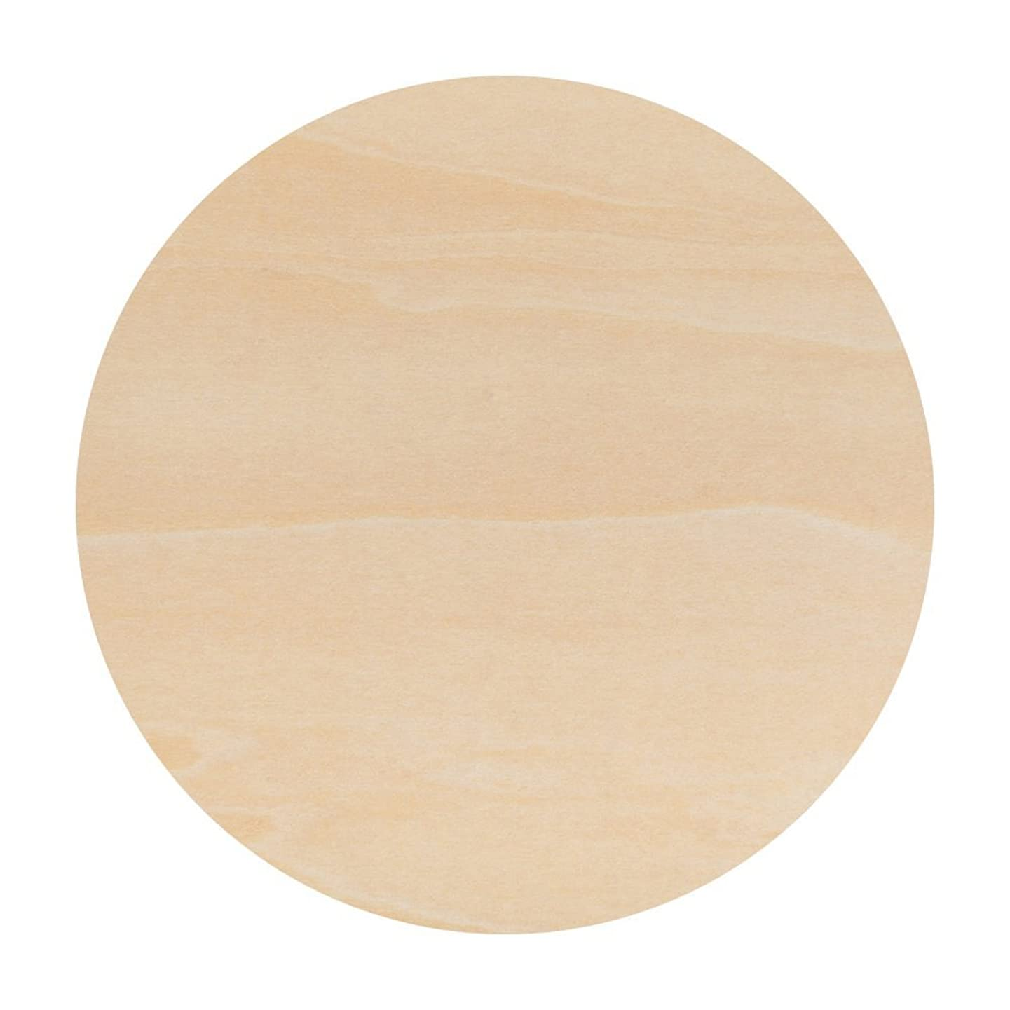 Unfinished Round Wood Circle Cutout 6 inch - Bag of 10 - by Woodpeckers