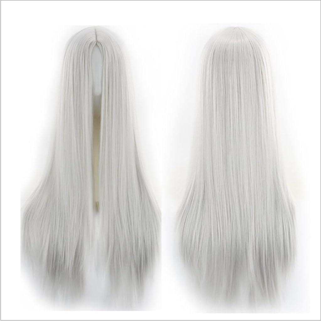 公演感動するプラスチックJIANFU 人々 パーティー パフォーマンス かつら ミドルワンウィッグ 耐熱 長い ストレート かつら 65cm(マルチカラー) (Color : Silver gray)