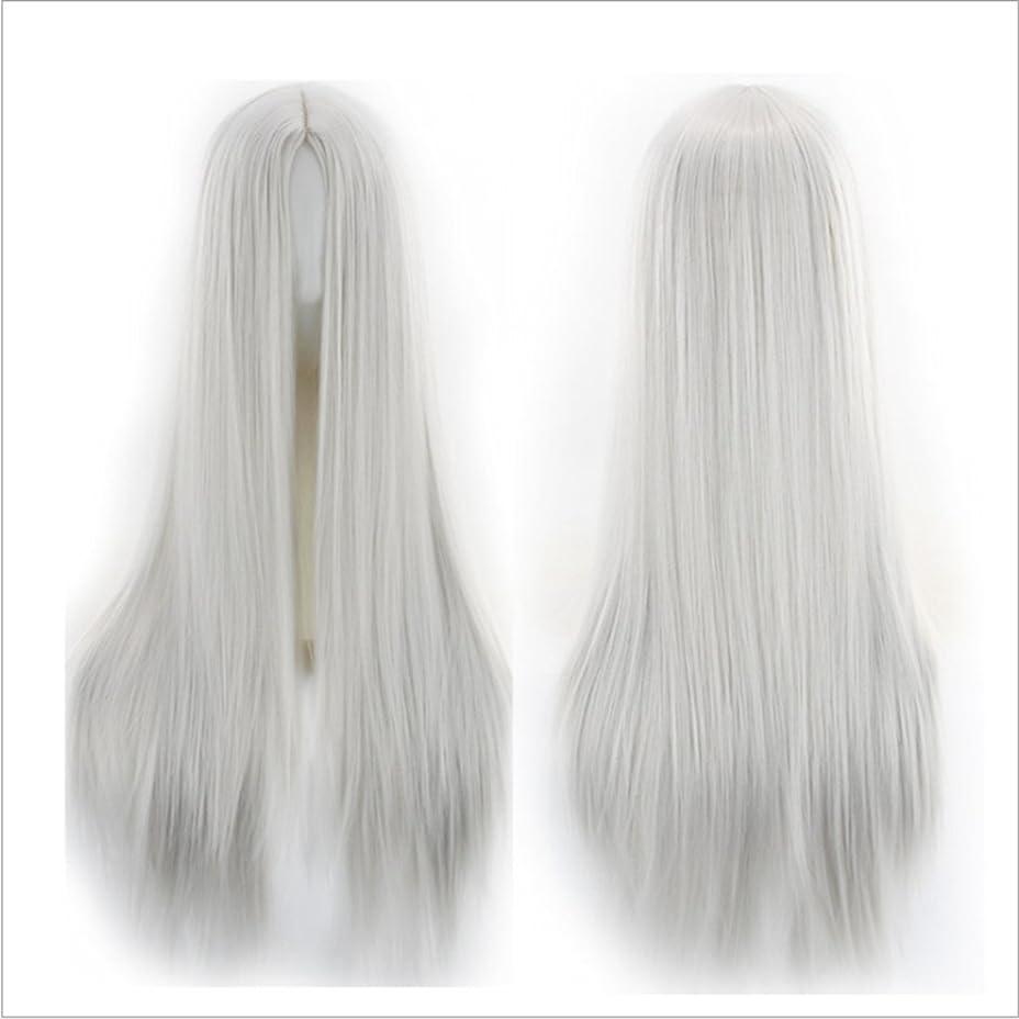 フォーラム佐賀考慮JIANFU 人々 パーティー パフォーマンス かつら ミドルワンウィッグ 耐熱 長い ストレート かつら 65cm(マルチカラー) (Color : Silver gray)