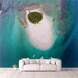 Modern 3D PVC Design Removable Wallpaper for Bedroom Living Room Aerial view of Sandy Spit British Virgin Islands Wallpape...