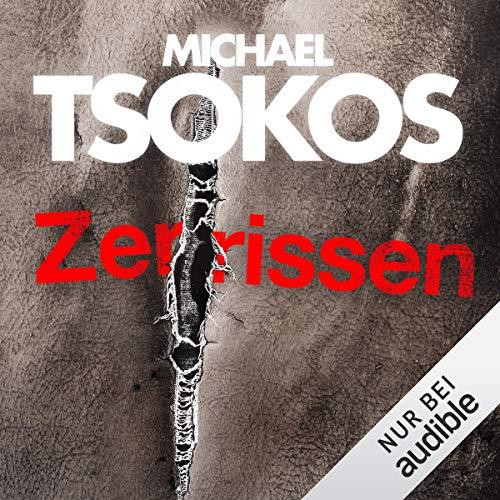 Zerrissen: True-Crime-Thriller 4