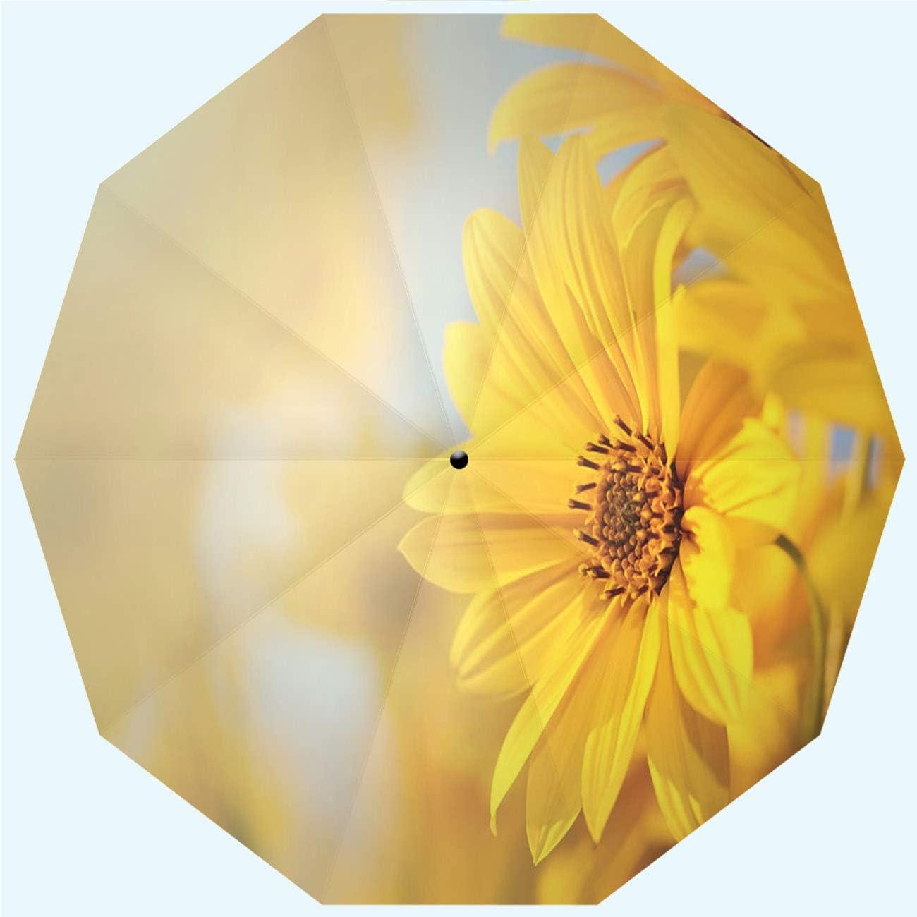 RLDSESS Surprise price Vintage Travel Folding Umbrella and Opening Automatic Ranking TOP11 C
