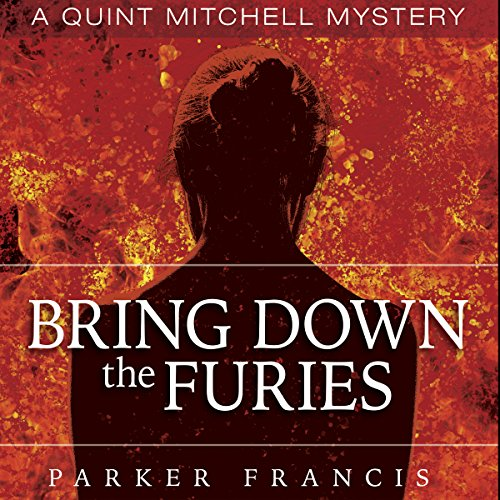 Bring Down the Furies audiobook cover art