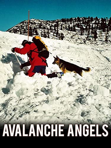 Avalanche Angels product image