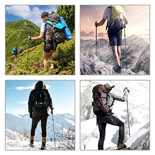 MoKo Collapsible Trekking Pole, Ultralight Adjustable Folding Alpenstock, Retractable Walking Stick Hiking Pole, with Moisture Absorb EVA Foam Handle for Climbing, Mountaineering, Backpacking - Black