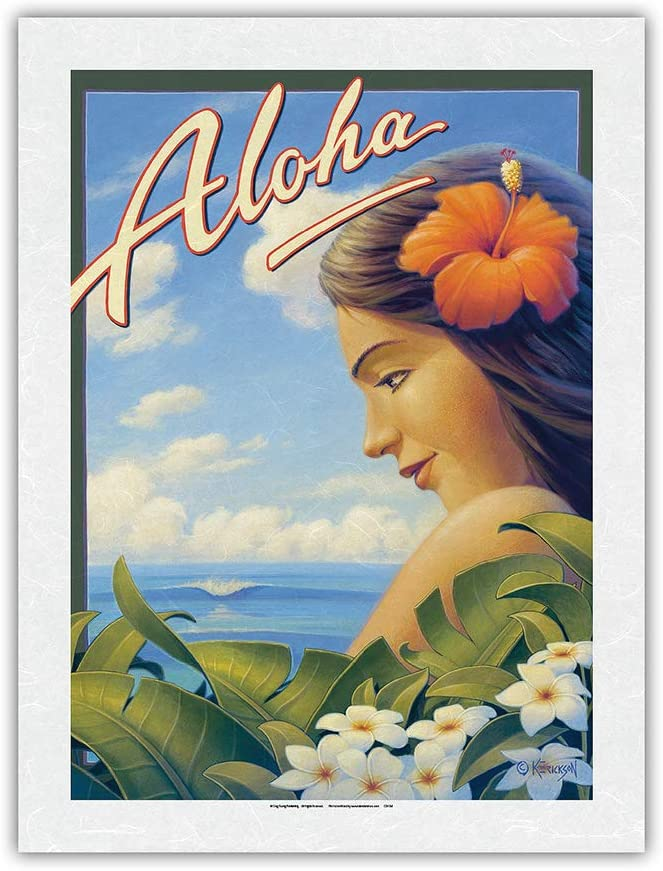 Aloha Free Shipping New - Hawaii Super special price Plumeria Flowers Travel Vintage Hawaiian Post