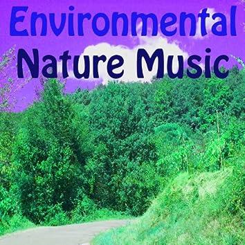 Environmental Nature Music (Vol. 2)