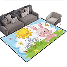 Printed Mats for Children Bedroom Kids Decor,Cute Bunny Rabbit in Flower Garden with Happy Sun Lady Bugs and Butterfly Print,Multicolor 48
