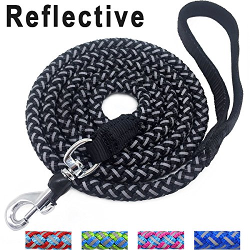 Top 16 nylon leash small dog for 2020