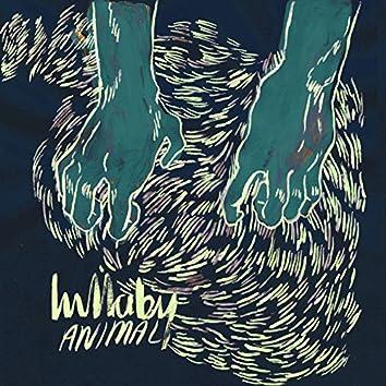 Animal (Acoustic)