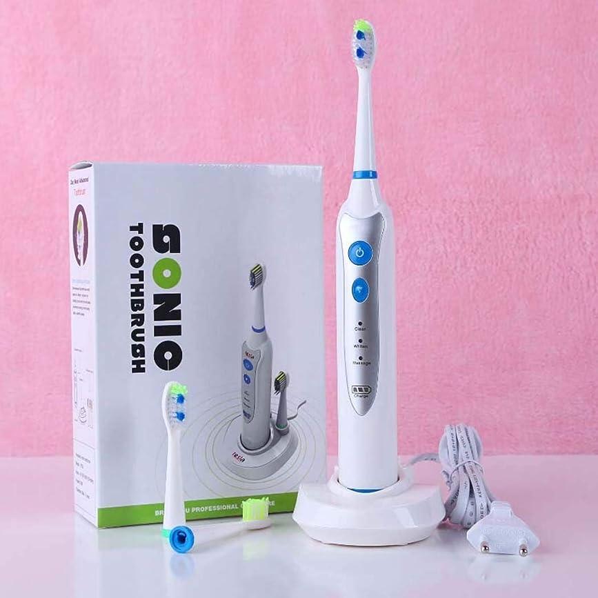 多様体売り手アラスカ電動歯ブラシ、多機能防水電動歯ブラシ、磁気サスペンション音波振動歯ブラシ、誘導充電、3交換用ヘッド