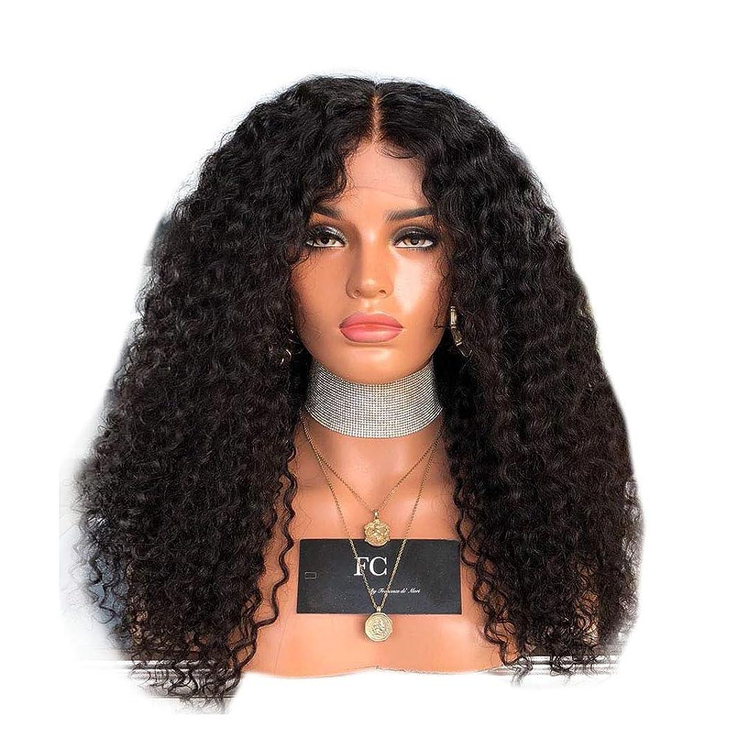 子孫リハーサル好意BOBIDYEE 女性の黒の長い巻き毛のフロントレースかつらアフリカの黒のかつら合成髪のレースのかつらロールプレイングかつら (色 : 黒, サイズ : 18 inches)