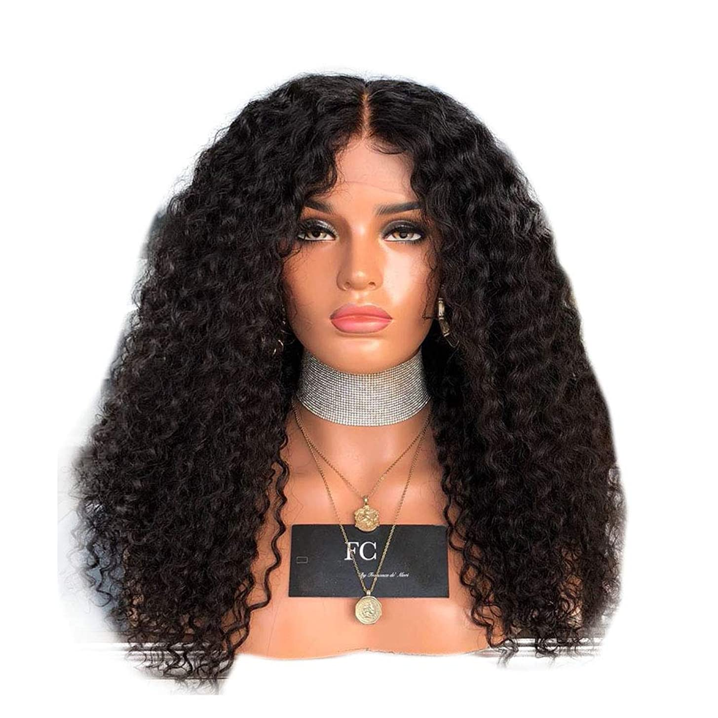 うねる重さ蜜Yrattary 女性の黒の長い巻き毛のフロントレースかつらアフリカの黒のかつら合成髪のレースのかつらロールプレイングかつら (色 : 黒, サイズ : 18 inches)