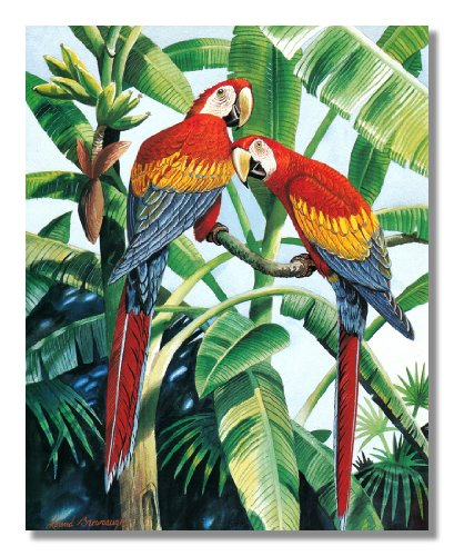 Two Scarlet Macaw Parrott Birds in Palm Tree Wall Picture 8x10 Art Print