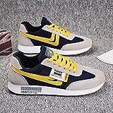 Aerlan Gym Shoes Lightweight Shoes,Zapatos Casuales Masculinos Transpirables, Zapatos de Senderismo para Correr-Blue_40,Botas de montaña Deportivas